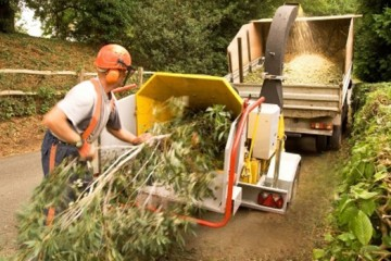 yard cleanup gig harbor