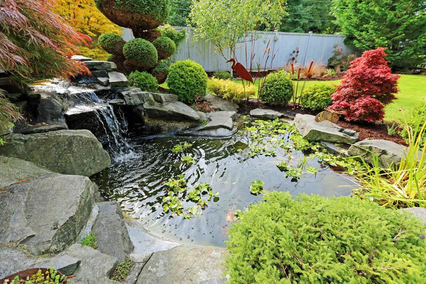 yard pond