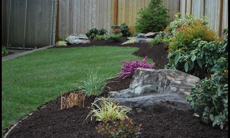 backyard landscaping washington