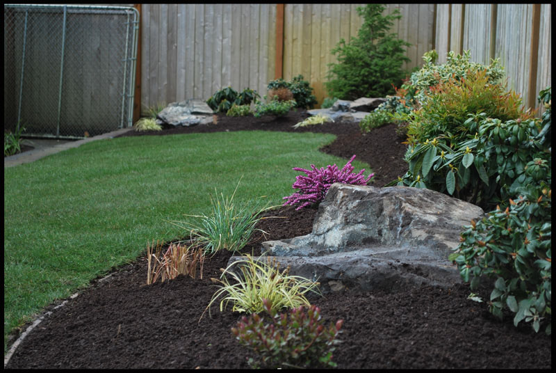 backyard landscaping washington