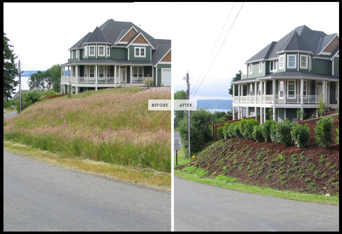 landscape services clean-up tacoma